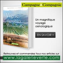 Vins bio: La filière voit lavie envert | Agriculture en Gironde | Scoop.it