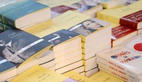Internet n'a pas tué les librairies françaises: l'étude qui dédouane Amazon | marketing emotionnel | Scoop.it