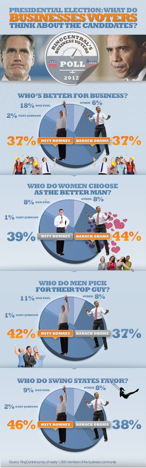 Infographic: Business Voters on the 2012 U.S. Presidential Election | data visualization US Election | Scoop.it