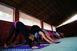 Why Choose a Yoga Teacher Training Course in Germany and Italy? | Yoga Teacher Training Coures In Germany | Scoop.it