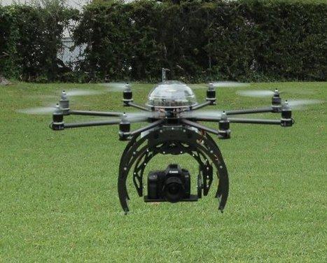 Biomimétisme : des drones filmeront mieux... grâce aux cygnes - Futura Sciences | Biomimétisme Biomimicry | Scoop.it