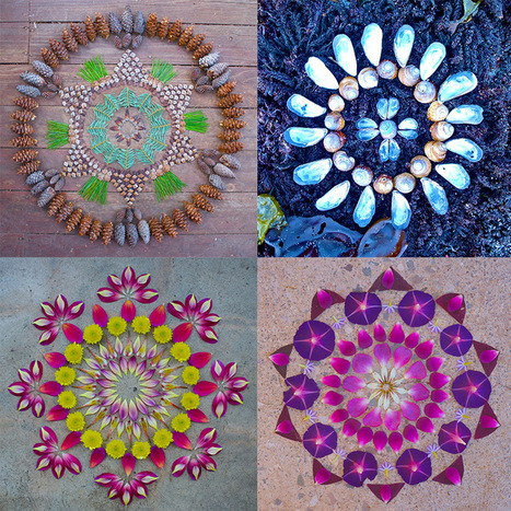 New Flower Mandalas by Kathy Klein | Colossal | Culture and Fun - Art | Scoop.it