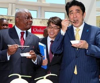 Abe pitches 'business diplomacy' in Africa to counter China | Daraja.net | Scoop.it