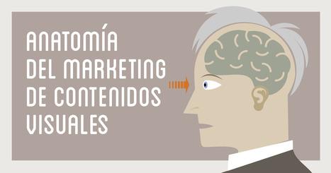 Anatomía del marketing de contenidos visuales (Infografía) | Social Media | Scoop.it