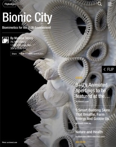Bionic City magazine, September 2013 | Espaços expandidos | Scoop.it