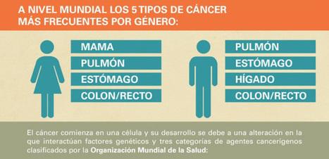 Infografía: Cómo ganar la lucha contra el cáncer | El rincón de mferna | Scoop.it