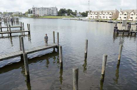 Gazette.Net: UM oceanographer tracks rising water levels in Chesapeake Bay | All about water, the oceans, environmental issues | Scoop.it