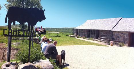 Le buron de Camejane, l'adresse incontournable pour un aligot | L'info tourisme en Aveyron | Scoop.it