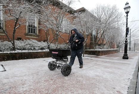 Garden Q&A: Using salt on sidewalks in winter can harm nearby waterways   Gardening   Scoop.it