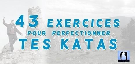 43 exercices pour perfectionner tes katas | Imagin' Arts Tv | Scoop.it
