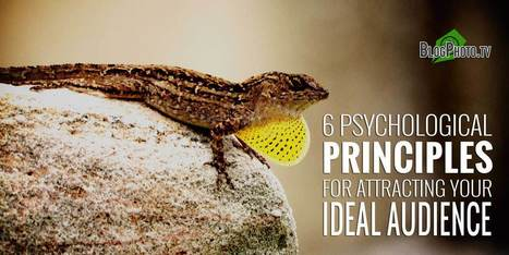 6 Psychological Principles For Attracting Your Ideal Audience   Linguagem Virtual   Scoop.it