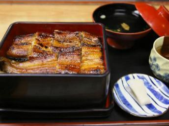 Les Japonais sont interdits de consommation d'anguilles | RFI | Japon : séisme, tsunami & conséquences | Scoop.it