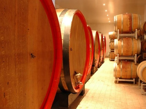 Ciu' Ciu' wines Le Marche: territory and tradition | Wines and People | Scoop.it
