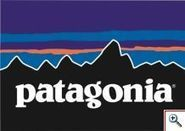 Water-resistant down from Patagonia | Fashion & Retail News | Ethical Fashion | Scoop.it