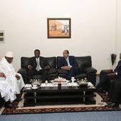 Le Tchad pris dans le « piège » de la crise centrafricaine | Centrafrique | Scoop.it