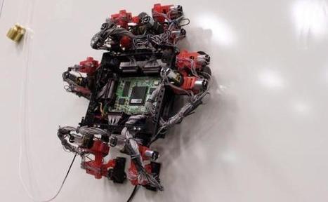 Un robot inspiré du gecko prêt à partir dans l'espace | Robolution Capital | Scoop.it