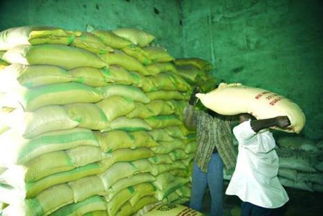 Malijet Sécurité alimentaire au Mali / Le dispositif a souffert de la gestion de la crise humanitaire au nord Mali Bamako | Droit de l'Homme | Scoop.it