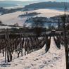 Latests news in Wine Fermentation