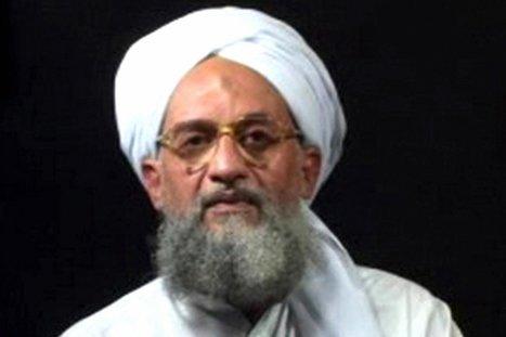 Al Qaeda Comeback | EXTREMISM AND RADICALIZATION | Scoop.it