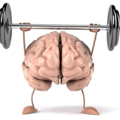 Brain Experiment Could Give You an Extra 20 Years   Smart ICT use in business   Scoop.it
