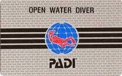 SCUBA SCOOP/latest dive stories: The PADI Story | All about water, the oceans, environmental issues | Scoop.it