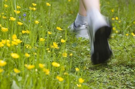 Décrassage de printemps, faites-le avec des fleurs | Revue | Scoop.it