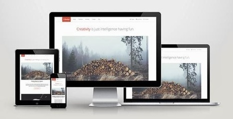 Develop Responsive WordPress Theme | Free Download Template | Scoop.it