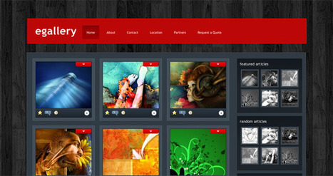 Wordpress for Artists: Gallery and Portfolio Themes Showcase | AllAboutArt @ArtLife | Scoop.it