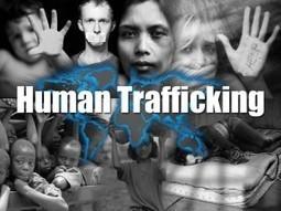 AMW Sex Trafficking Resources | Sex Trafficking | Scoop.it