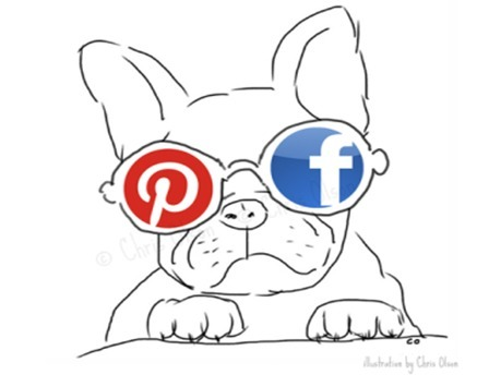 Pinterest vs. Facebook Smack Down For Visual Social Supremacy Says Cool Dog | Marketing Revolution | Scoop.it