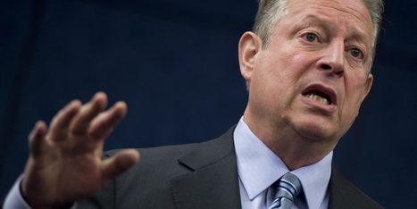 Al Gore devient végétalien | Des 4 coins du monde | Scoop.it