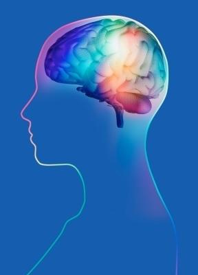 Hallan un receptor cerebral relacionado con la diabetes y el control ... | Cuidados de Enfermería en el Adulto con Diabetes | Scoop.it