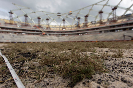 Brazil's World Cup Will Kick the Environment in the Teeth - The Nation. (blog) | Sports Facility Management.4031507 | Scoop.it