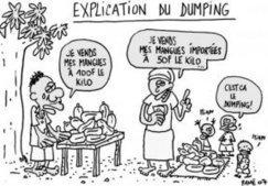 Destruction de l'agriculture africaine par un dumping sur les produits agricoles   Questions de développement ...   Scoop.it