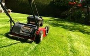 [jardinage] Tondre la pelouse | La Revue de Technitoit | Scoop.it