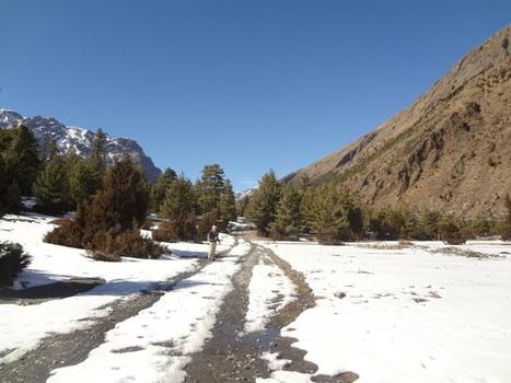 Trekkers die in thorongla pass of Annapurna circuit of Nepal | Volunteering in Nepal | www.nepalspiritualtrekking.com | Scoop.it