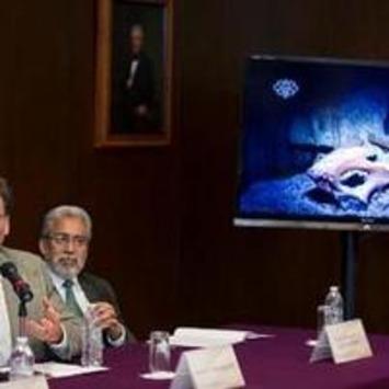 Confirman que esqueleto hallado en México es el más antiguo de América | Prensa Libre (Guatemala) | Kiosque du monde : Amériques | Scoop.it