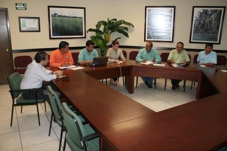 Colima Noticias: Busca SEDER alternativas de comercialización para productores locales - Colima Noticias | marketing | Scoop.it