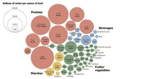 A Chart Showing You How Much Water It Takes To Grow All The Food You Eat | Mrs. Watson's Class | Scoop.it