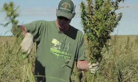 Hemp Industry Brings Momentum to Annual History Week - Associations Now | Cannabis News & Information | Scoop.it