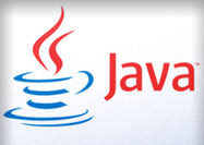 Homeland Security still advises disabling Java, even after update   SeMeMal   Scoop.it