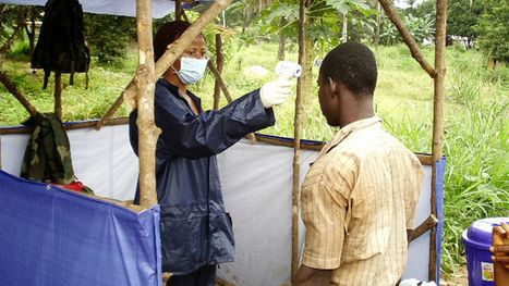 No end in sight to Ebola outbreak, official says | Virology News | Scoop.it