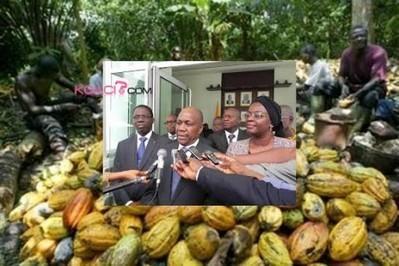 Côte d'Ivoire : Campagne 2013, les satisfécits du Conseil Café-cacao   FILIERE CAFE CACAO EN COTE D'IVOIRE   Scoop.it