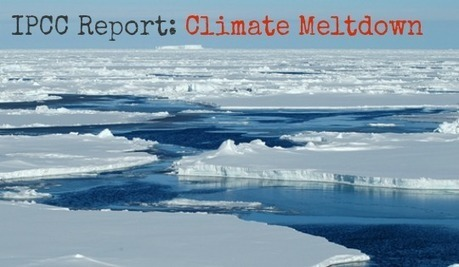 'Debate on Science is Over, Time to Act Is Now': World Reacts to IPCC Report | STEM | Scoop.it