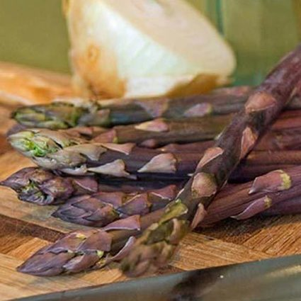 Purple Passion Asparagus | Springhill Nursery | Scoop.it