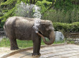 Oldest Animals: Life Spans Of Elephants, Tortoises And More Species | Animals R Us | Scoop.it