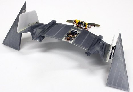 Un robot capaz de volar y andar inspirándose en los murciélagos vampiros | Notas para 'Papá quiero un robot' | Scoop.it