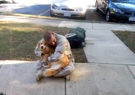 Some Of The Most Heartwarming Soldier Homecoming Videos... | The Billy Pulpit | Scoop.it