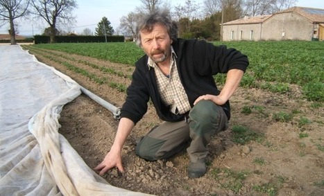 « Les semences paysannes doivent être protégées au même titre que les semences de ferme ! » selon  Christian Crouzet | Agriculture en Dordogne | Scoop.it