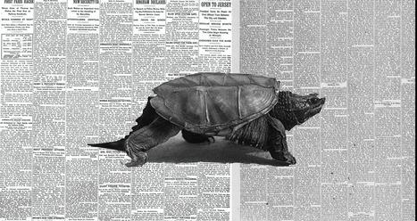 Slow journalism: se il giornalismo punta alla qualità | Inside Marketing | Scoop.it